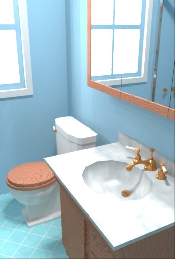 Image gallery daylighting for Bathroom remodel simulator